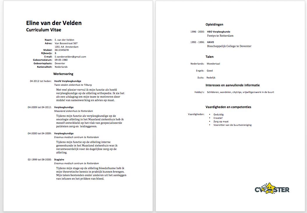Verpleegkundige CV Voorbeeld   Gratis Download
