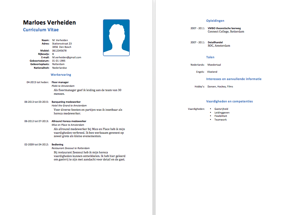vaardigheden cv lijst Vaardigheden Cv Lijst | hetmakershuis