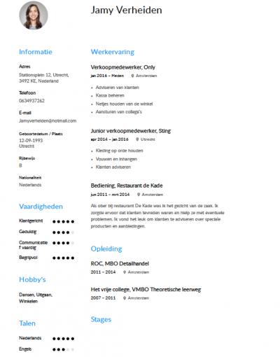 cv voorbeeld verkoopmedewerker Verkoopmedewerker CV Voorbeeld   Gratis Downloaden
